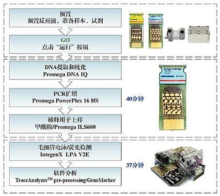 美国瑞捷出口产sunbet下载HIT200 DNA快快检测仪